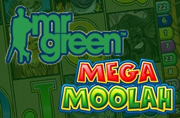 3-preview-260х170-mega moolah slot at Mr Green Casino